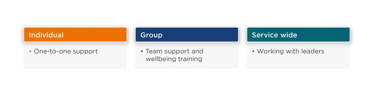 Individual. One-to-one support. Group. Team support and wellbeing training. Service wide. Working with leaders.